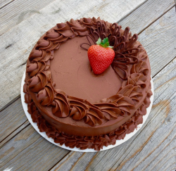 Chocolate Cake with Whipped Chocolate Mousse Icing